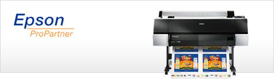 "Epson SC-P8000 44"""