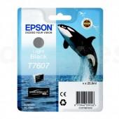 tinta epson T760700