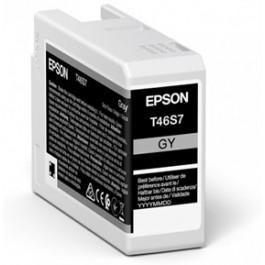 Tinta Epson T46S700