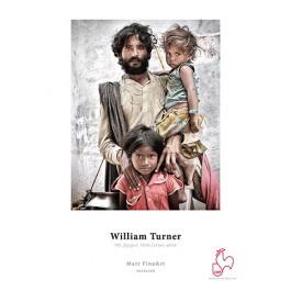Hanemule William Turner 190 A3+